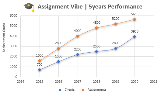 Assignment Vibe 5years Performance
